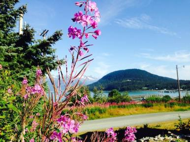 Lenora Bell Interview - Fireweed, Alaska